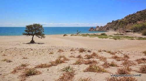 Samotracia, spiaggia di Pachia Ammos