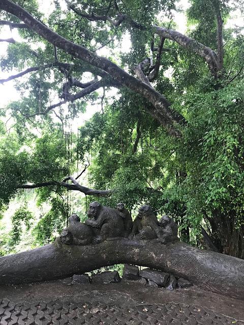 foresta delle scimmie ubud bali