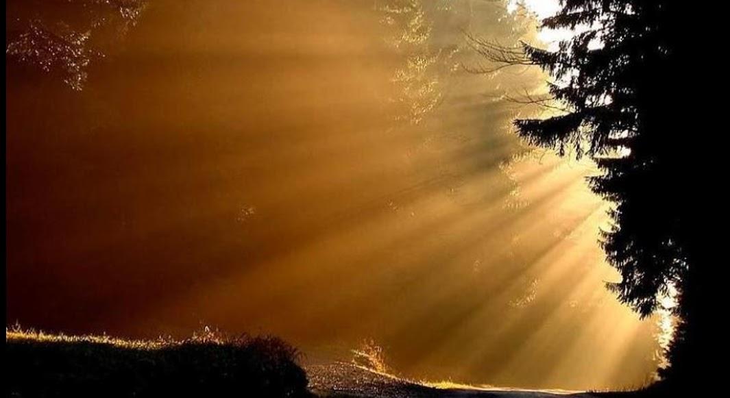 Imagens De Bom Dia E Boa Noite: Vivendo A Palavra De Jesus: PSIU: Bom Dia... Boa Tarde