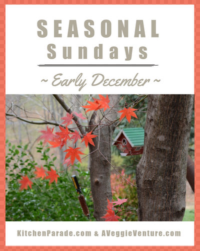 Seasonal Sundays ♥ KitchenParade.com, easy December recipes plus a showcase of cut-out cookie recipes plus holiday ideas for the home and life.