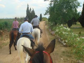 Espanja, ratsastusmatka, Costa Brava, Katalonia, riitta reissaa