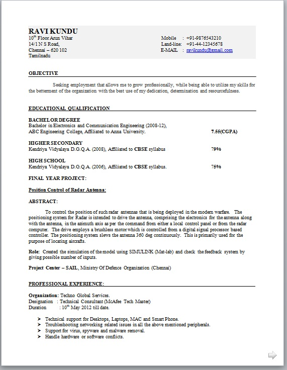 Standard Professional Resume Format Standard Format Resume. Sample
