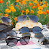 El Gobierno regional facilita recomendaciones a las personas consumidoras a la hora de comprar sus gafas de sol