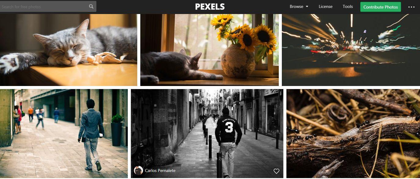 موقع Pexels للحصول على خلفيات و صور عالية الجودة بدقة 1080p لسطح المكتب والجوال