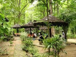 Monumen Hutan Jati Alam