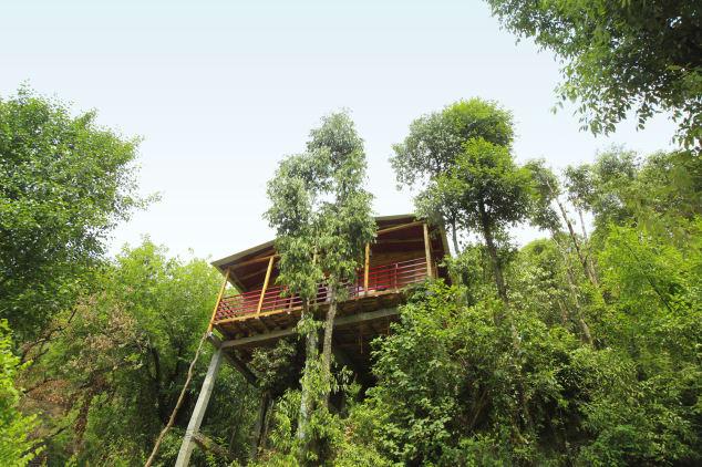 Cottage Nirvana Mukhteshwar Tree House