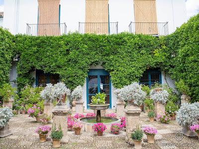 Kunjungan Cantik ke Palacio de Viana Cordoba
