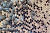 Τρύπιος γόνος με σκόρπια γέννα στο μελίσσι