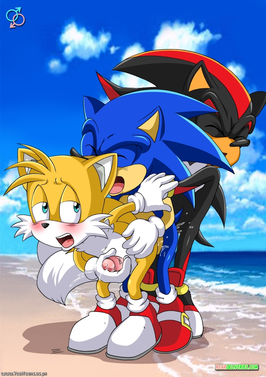 sonic and tails gay sex