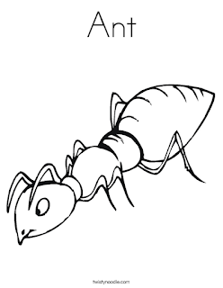 Ant Animal Coloring Page Print