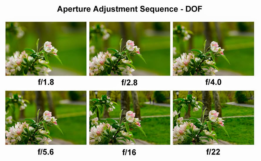 aperture sequence 2 - Photo capturing tips, Become a pro photographer, Photo editing Softwares, Apps and more