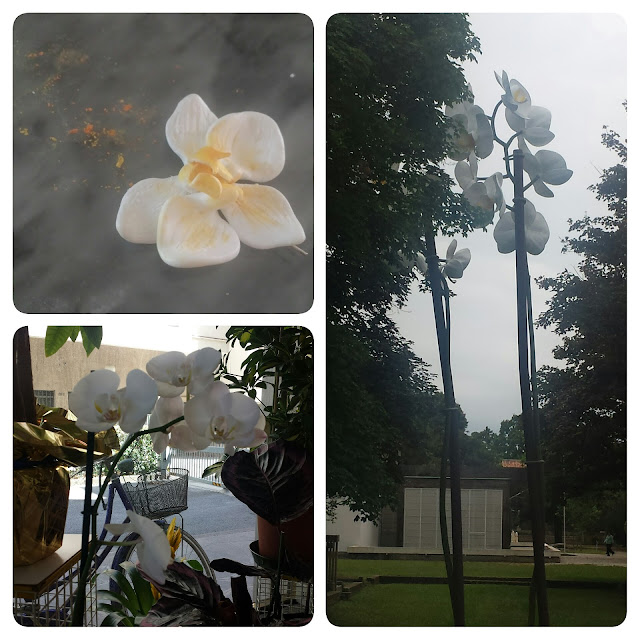 orchidee fimo e arte biennale