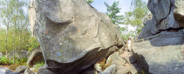 Horizon H202, Forêt de Fontainebleau