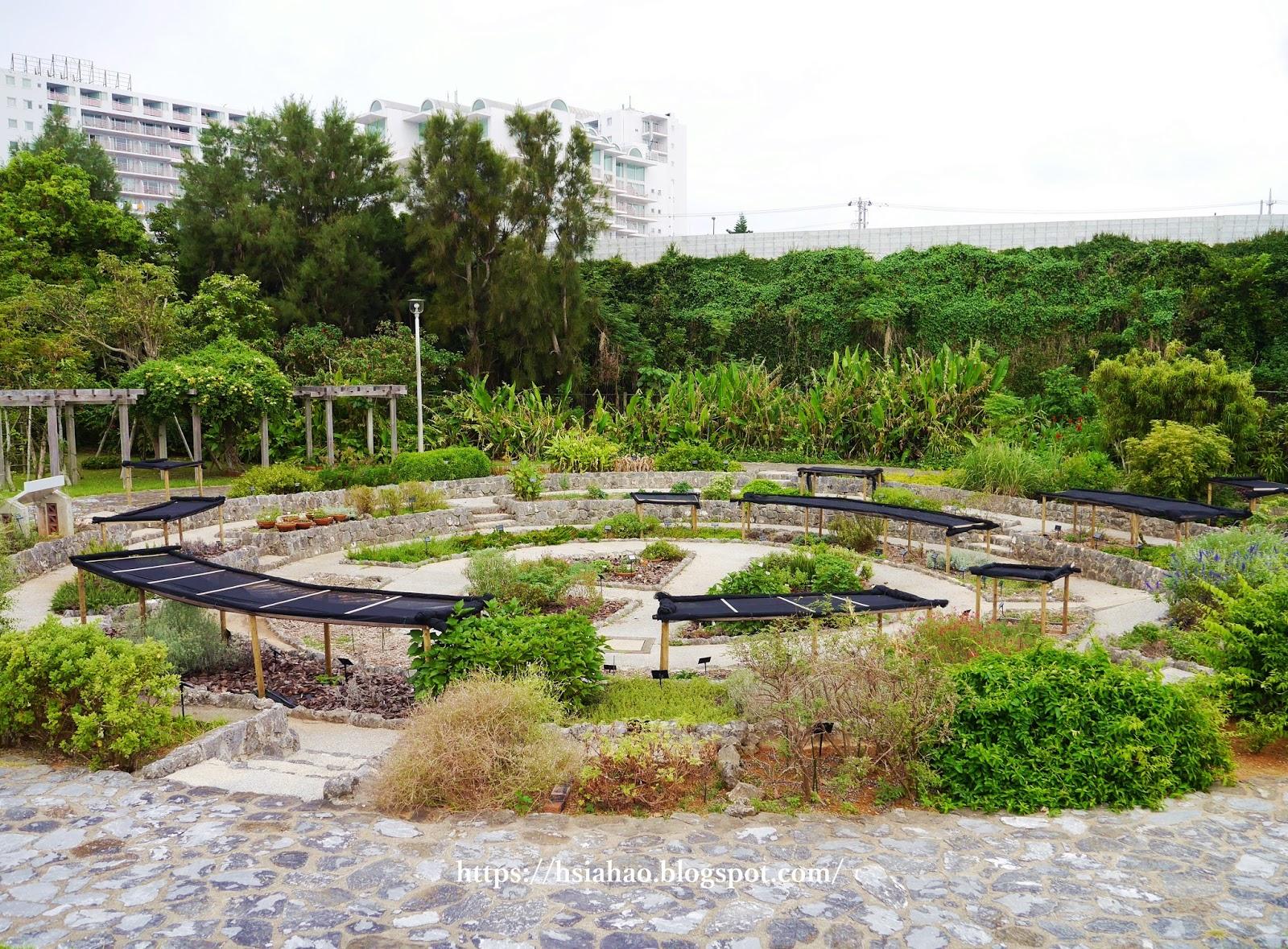 沖繩-海洋博公園-熱帶亞熱帶都市綠化植物園-海洋博公園景點-自由行-旅遊-旅行-okinawa-ocean-expo-park
