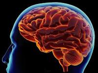 7 Penyakit yang menyerang otak kita
