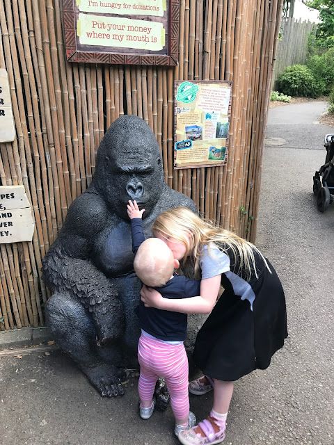 A life size black gorilla statue is being touched on the lips by my 1 year old who is being kissed on her lips by my 5 year old daughter