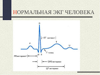 Номенклатура интервалов и зубцов  электрокардиограммы
