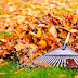 Fall Lawn Care Tips