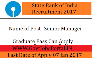 State Bank of India Recruitment 2017 for Senior Manager Post