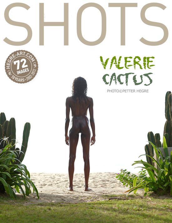 Hegre-Art18 Valerie - Cactus 07150