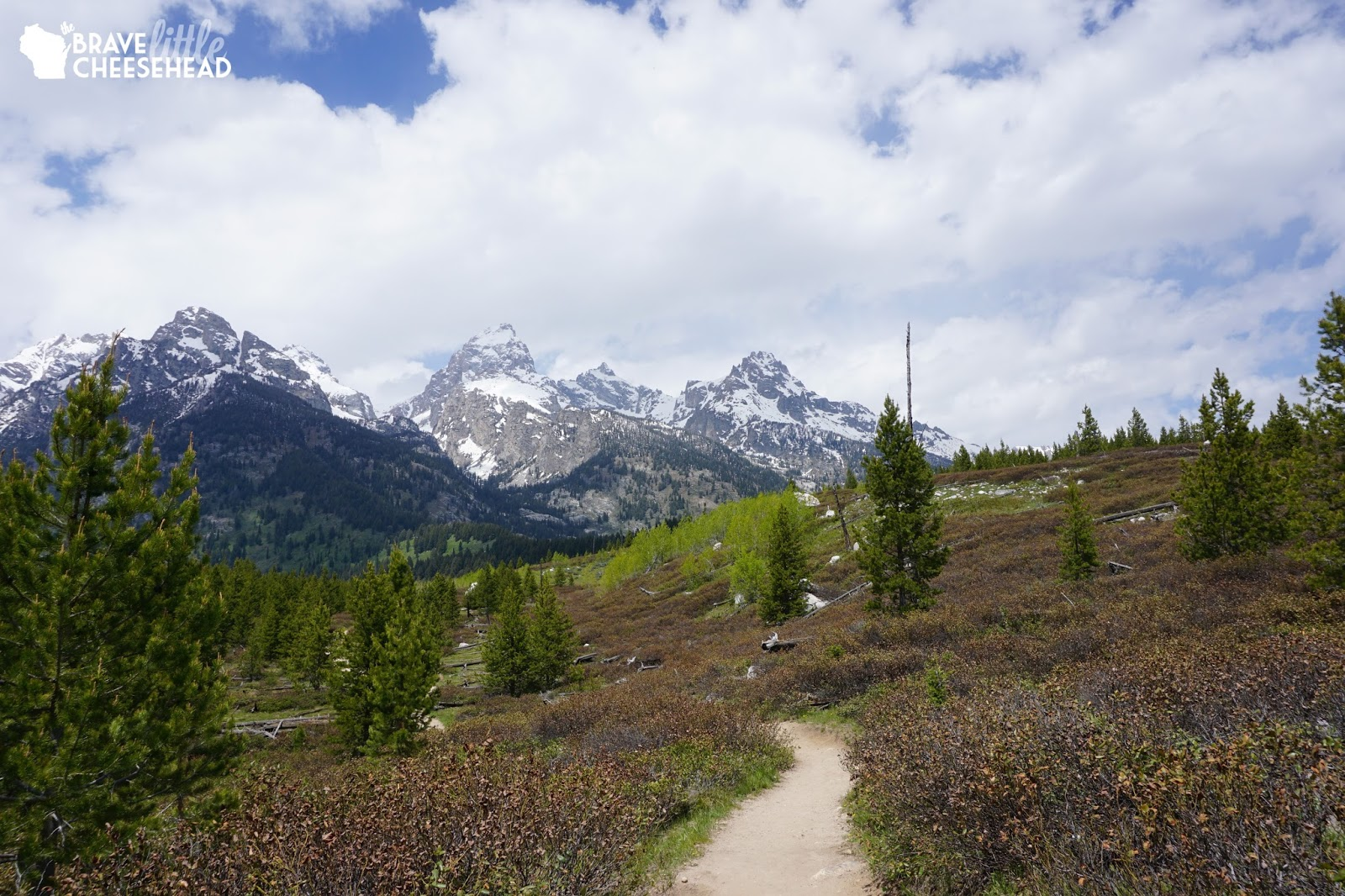 6 Day Hikes at Grand Teton National Park With Views You Can't Forget | The Brave Little Cheesehead