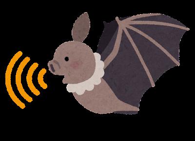 超音波を出すコウモリのイラスト