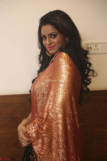Udaya Bhanu lookssizzling in a Saree Choli at Gautam Nanda music launchi ~ Exclusive Celebrities Galleries 131.JPG
