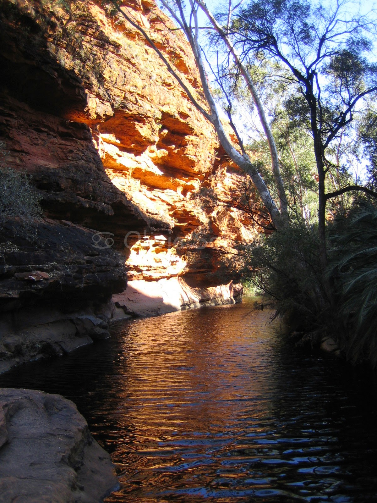 Garden of Eden, Kings Canyon, Australie
