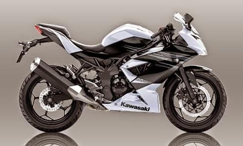 Kawasaki Ninja RR Mono Non ABS