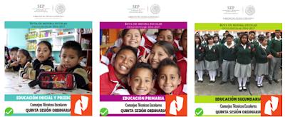 Guías Quinta Sesión Consejo Técnico Escolar Febrero  2017