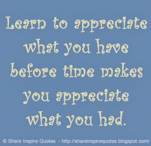 Appreciate Time Quotes: Learn To Appreciate What You Have Before Time Makes You