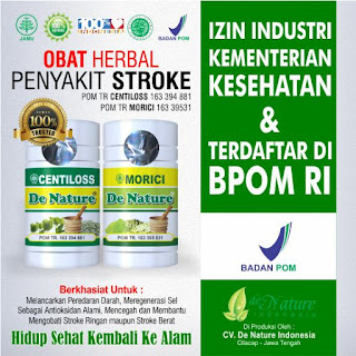 Obat herbal Stroke, Obat Stroke, Obat Stroke alami, Obat Stroke bagus, Obat Stroke ishemik