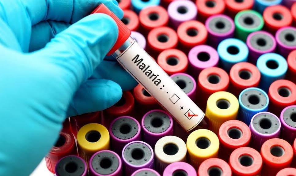 Salute News: riconoscere la malattia annusando le molecole liberate dalla pelle