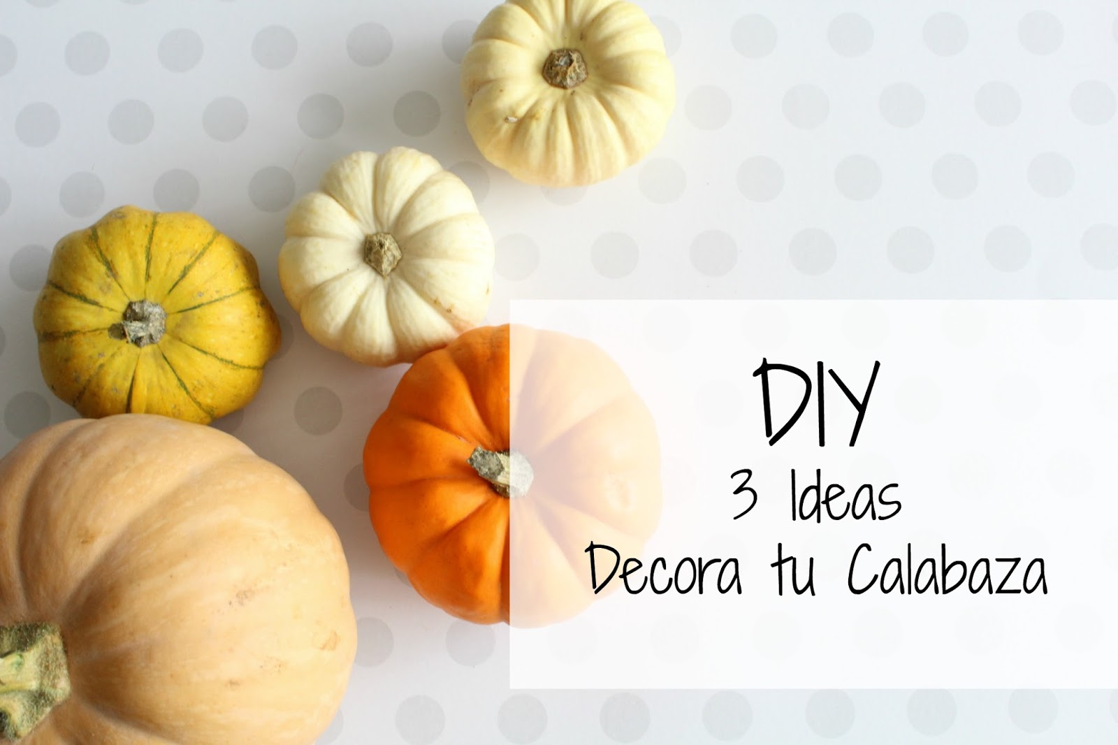 DIY 3 idea Decora tu Calabaza - Handbox Craft Lovers | Comunidad DIY ...