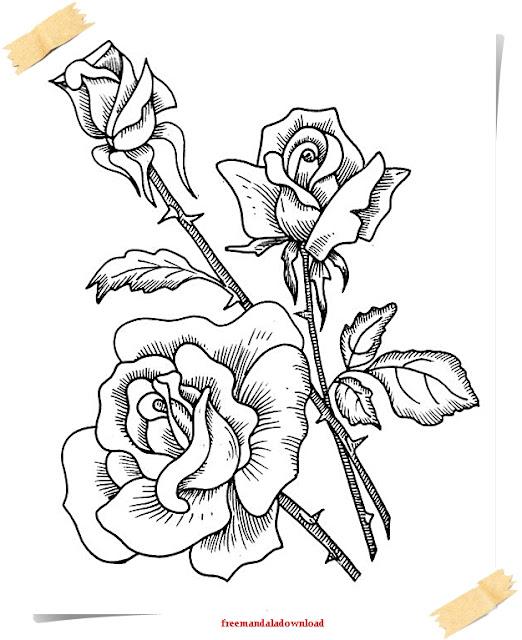 Charmant Farbseiten Blumen Fotos - Framing Malvorlagen ...