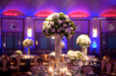 Under Vase Lights