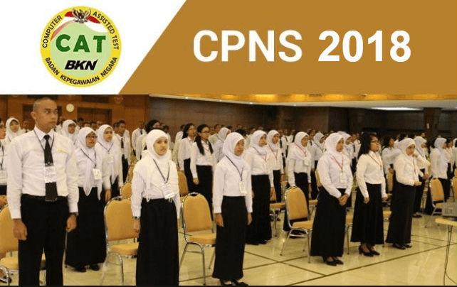 Pendaftaran CPNS 2018 Dimulai Februari, Cek Formasi yang Dibutuhkan dan Lihat Contoh Soal Ujian CPNS