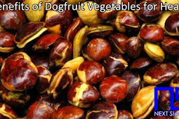 Benefits of Dogfruit Vegetables for Health