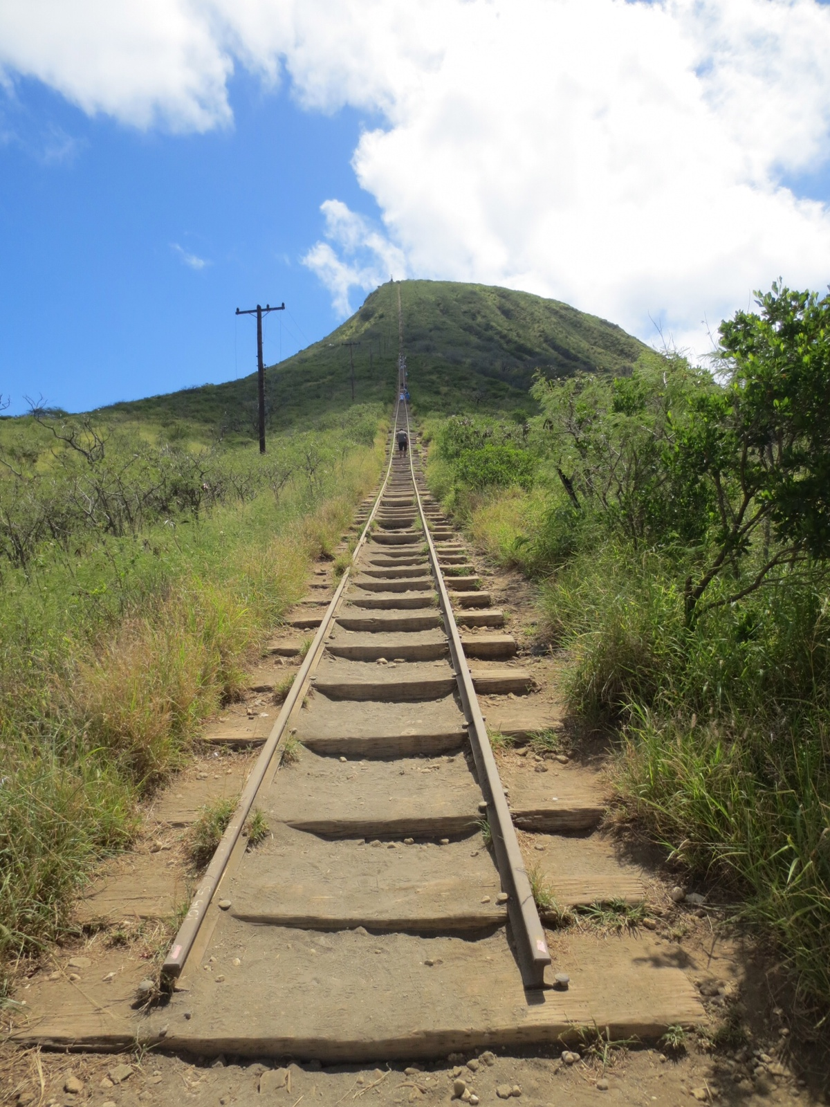 Koko K Dupe: Living In The Moment: Koko Head