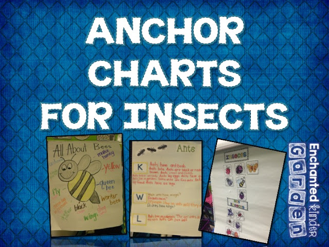Anchor chart for insect unit in kindergarten