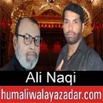 https://www.humaliwalyazadar.com/2018/09/ali-naqi-nohay-2019.html