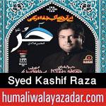 http://www.humaliwalayazadar.com/2017/09/syed-kashif-raza-nohay-2018.html
