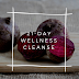 FREE 21- DAY WELLNESS CLEANSE