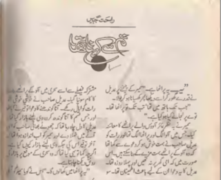 tum se kehna tha by Rahat Jabeen