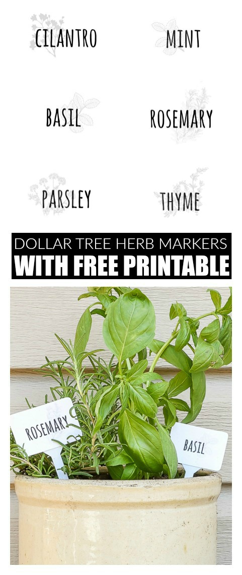 DIY Dollar tree herb markers and free printable