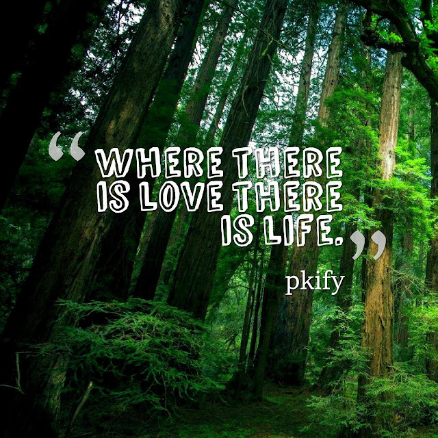 Where There Is Love There Is Life Life Qutoes