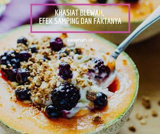 kombinasi blewah, yogurt dan lainnya
