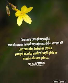 hadisler, kırk hadis, 40 hadis, resimli hadisler, hayatımıza yön veren hadisler, hz muhammed sözleri, resimli hz muhammed sözleri, resimli hz muhammed hadisler