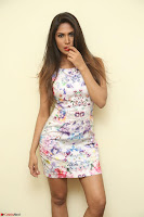 Nishi Ganda stunning cute in Flower Print short dress at Tick Tack Movie Press Meet March 2017 054.JPG