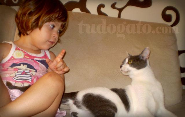 gatos-e-criancas_adestrando-gatos_03a.jpg